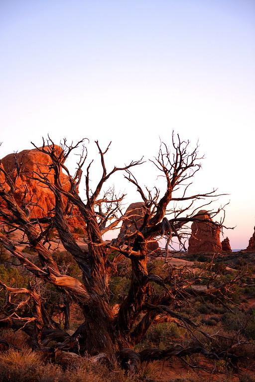 Moab May 2012