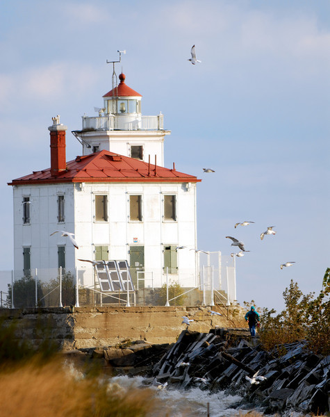 Gulls and Lighthouse