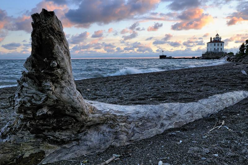 Headlands Dunes Nature Preserve