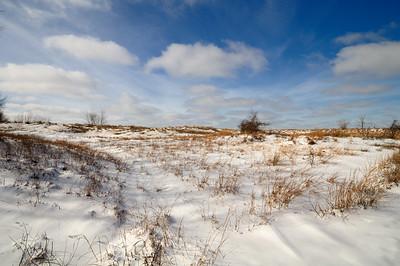 Headlands Dunes Winter 2010
