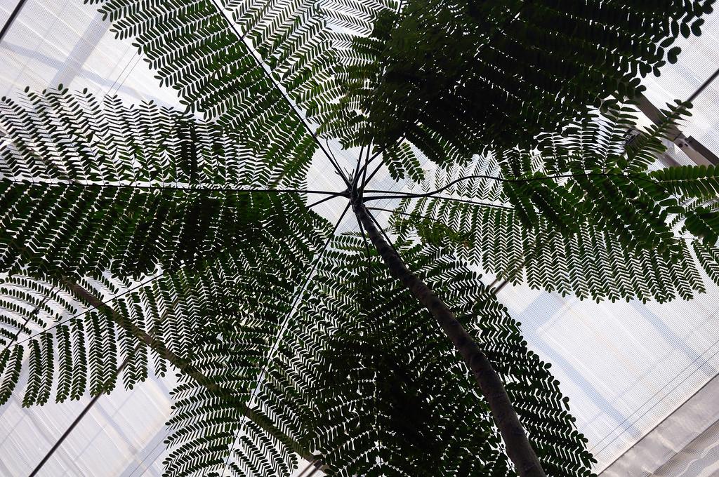 Miller Nature Preserve