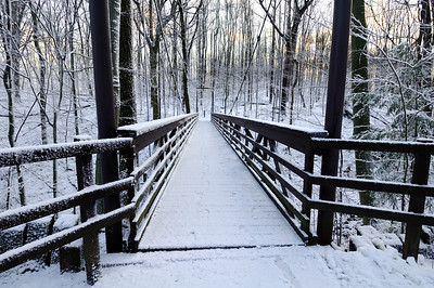 Suspension Bridge - Nature Realm