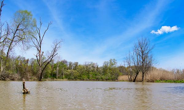Kayaking on Old Woman's Creek