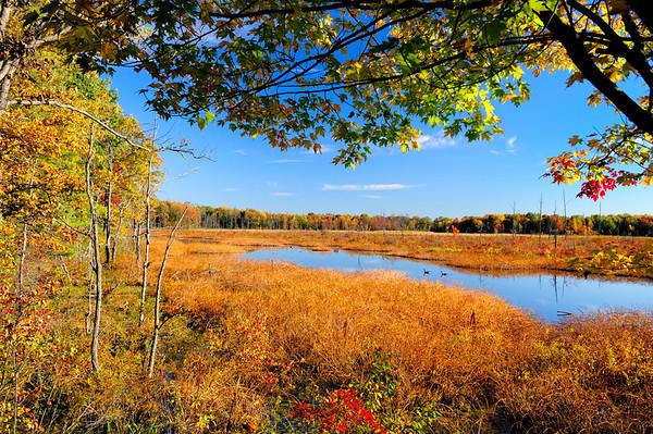 Tinker's Creek Nature Preserve