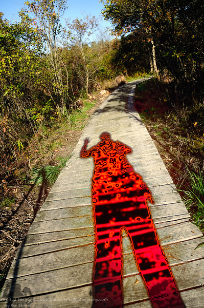 My New Colorful Shadow - Tinker's Creek Nature Preserve