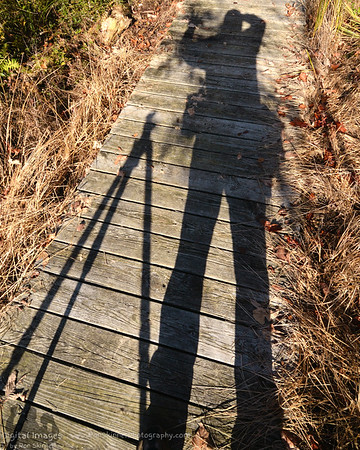 My Shadow at Tinker's Creek Nature Preserve