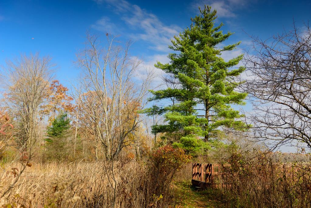 Tinkers Creek Nature Preserve