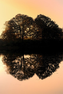 Sunrise at Tinker's Creek Nature Preserve