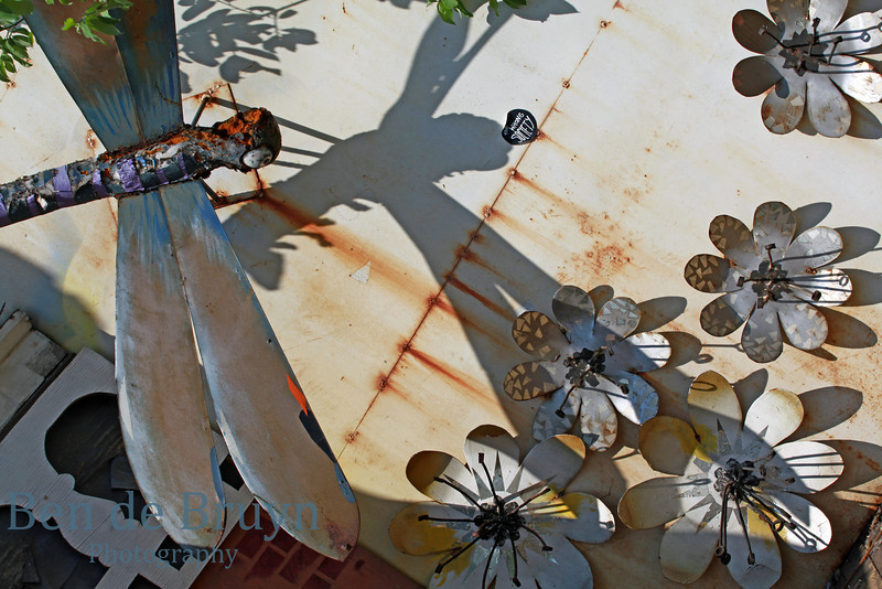Rusted dragon fly and flowers