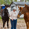 """Marilyn Kinney, horse trainer and horse lover, playing with the Tennesee Walking Horses from Walking Horse Farm, owned by Marilyn and Richard Kinney, in Cut N Shoot, Texas. Website info on the horses can be found at  <a href=""""http://www.walkingk.com"""">http://www.walkingk.com</a>."""