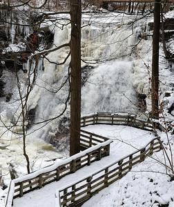 Brandwine Falls in the Winter