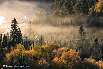 """Pine Tingling"" Grand Portage, MInnesota"