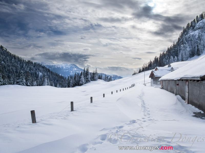 Schneelandschaft in den Bergen