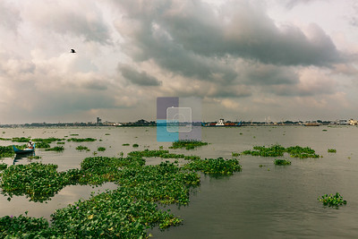 Kochi Lake, Kochi - Kerala, India