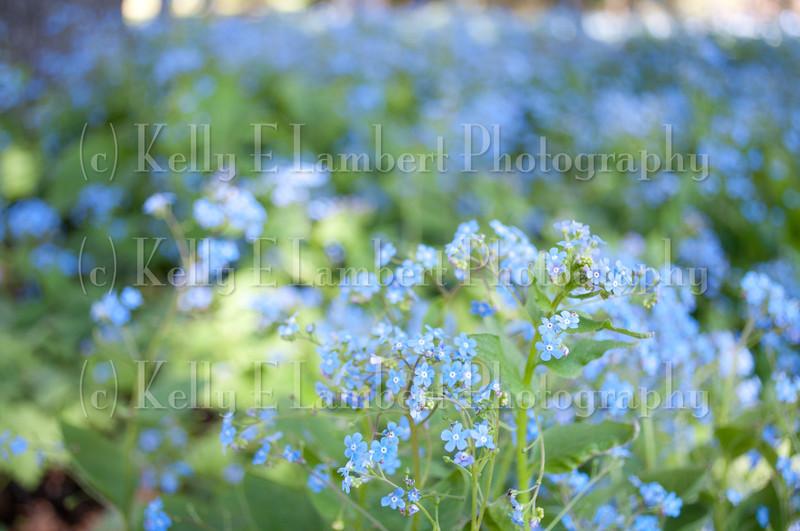 KL_May12_0032