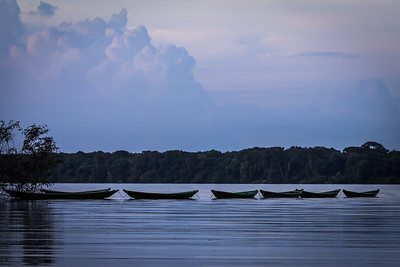 Boats resting at Rio Negro - Amazon