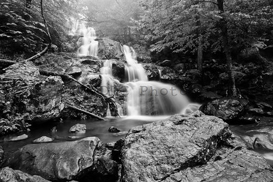 Shenandoah Waterfall Black and White