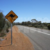 KI 20111013 080 Kangaroo Crossing Sign