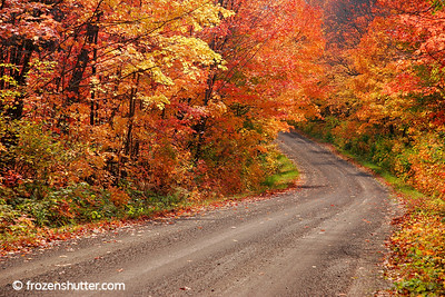 """Autumn Road"" Tofte, Minnesota"