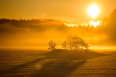 Morgendis på Kile