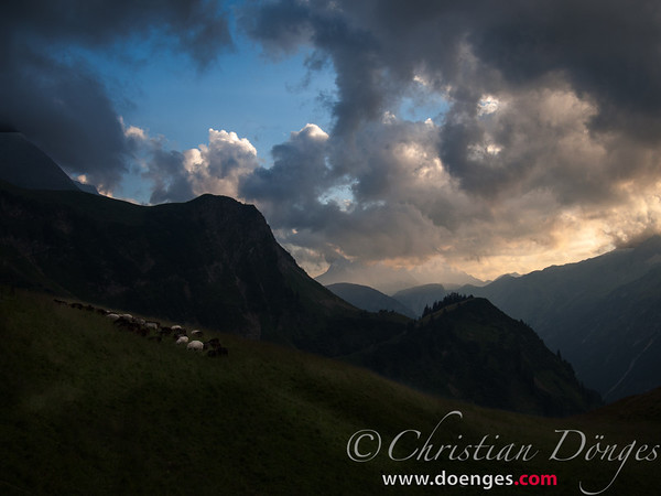 Dramatic lighting in the clouds as the mountainside and the sheep on it go dark in the dusk.
