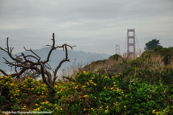 Presidio Park, Battery to Bluffs Trail, San Francisco, California