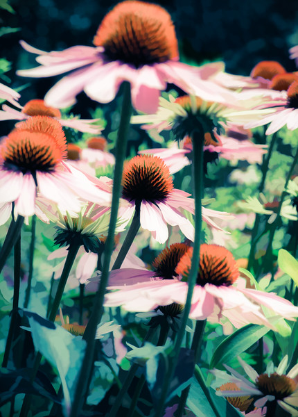 Flowers with painterly effect