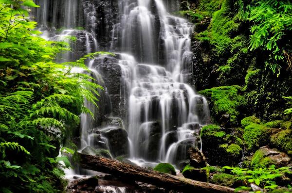 Fairy Falls*