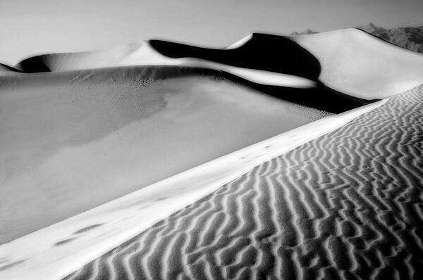 Dune Shadows*