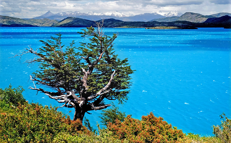 Postcards From Patagonia