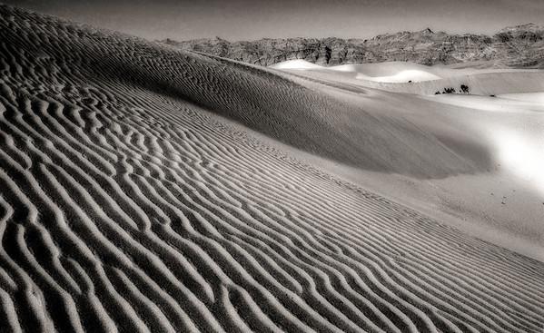 Desert Stripes*