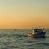 Great South Bay Fishing