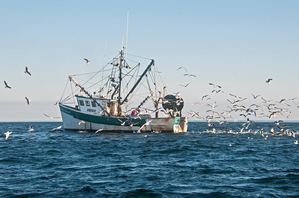 Jenna Lynn II (1985, Commercial Fishing Vessel, Stonington, CT)