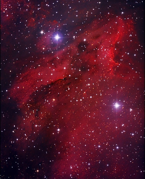 The Pelican Nebula - IC 5070<br /> November 6, 2010<br /> Deer Trail, Colorado<br /> 40 deg F;<br /> Canon 450D Honis-modified w/ Baader UV/IR cut filter & Baader MPCC;<br /> AstroTech AT8IN @f/4 / CGE;<br /> 14 images x 240 secs<br /> Guided with SSAG and PHD;<br /> Processed with Nebulosity & CS2