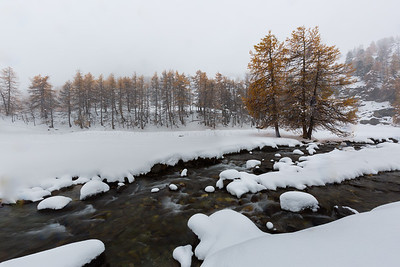 Winter's View #3