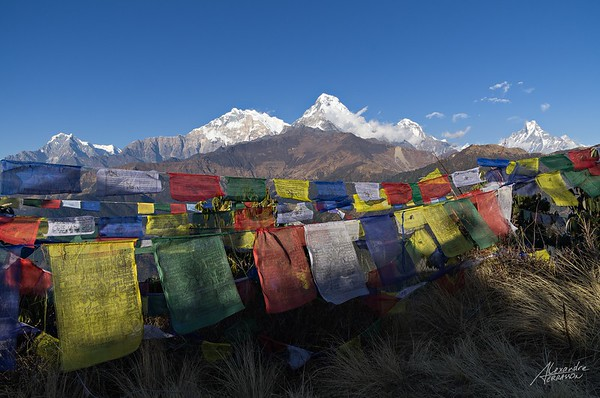 Annapurna's view from Poon Hill