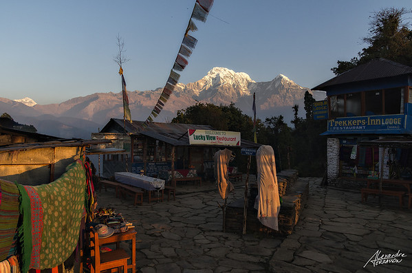 Sunrise view of the Annapurna from Pitam Deurali village