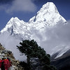 Ama Dablam, Khumbu Valley - Nepal<br /> <br /> Winter in Nepal. A small group of Buddhist Monks travel up the serpentine valley path toward the village of Pangboche. Above them rises the massive ice walled peak of Ama Dablam (22,600 ft).