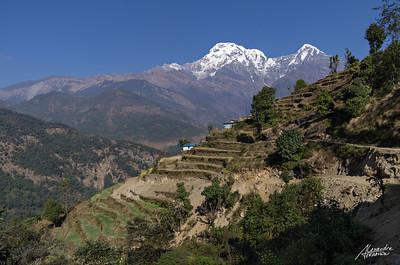 Annapurna landscape, near Landruk