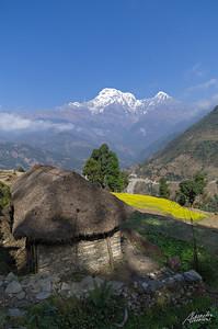 Village near Landruk