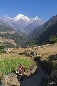 View from Landruk