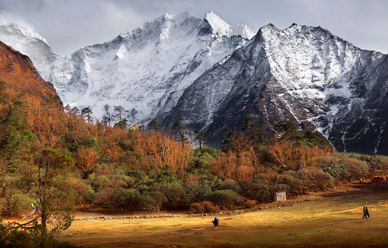 Near Tengboche, Khumbu Valley - Nepal<br /> <br /> Porters carry loads through the retreating evening light, along the border grounds of the Tengboche Monastery. Naked paper trees, yet to gain their spring leaves, soak up the warmth of the day as the enormous Himalaya remains locked in combat with the lingering high-altitude winter.