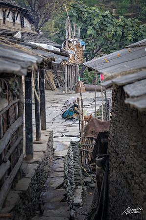 Street scene in a gorung village