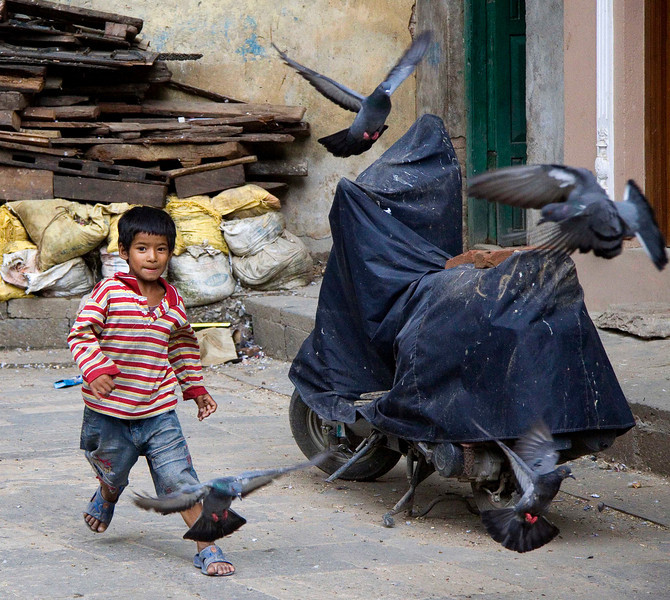 Boy and Pigeons, Kathmandu