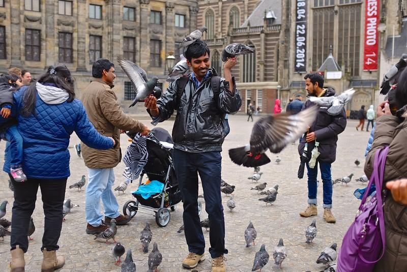 Pigeon Whisperer - Amsterdam, Netherlands