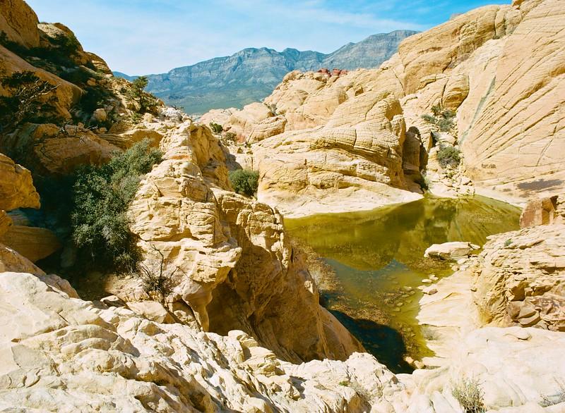 Calico Tanks, Red Rock Canyon - Near Las Vegas, Nevada