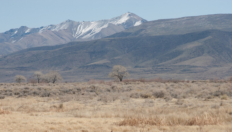Lahontan Valley Nevada, Stillwater National Wildlife Refuge
