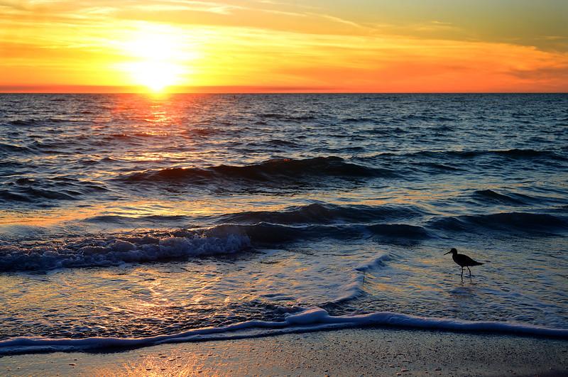 St. Petersburg Sunset