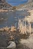 Incoming storm and reeds, Rio Grande, Pilar, NM.