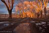 Ranch road at sunset 2.